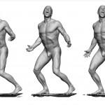 Anatomi 360 Referans Model