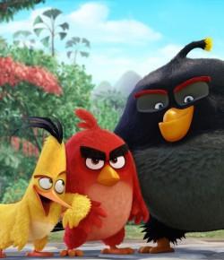 ANGRY BIRDS – YAPIM AŞAMASI