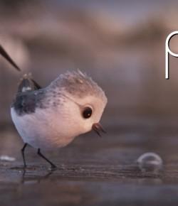PIPER (KISA ANİMASYON)