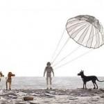 ISLE OF DOGS'TAN İLK FRAGMAN YAYINLANDI