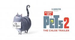 THE SECRET LIFE OF PETS 2'DAN YENİ BİR TANITIM VİDEOSU YAYINLANDI